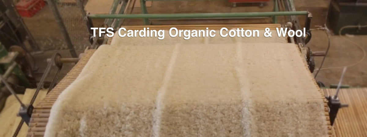 TFS Carding Organic Cotton & Wool