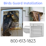 Dryer Vent Birds Guard Installation, AnbitAir Dryer Vent Cleaning and Birds Guard, Nest