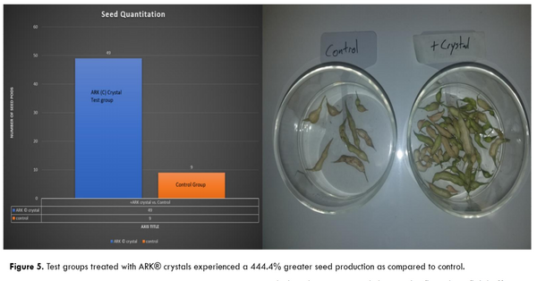 ARK crystal structured water testing seed production