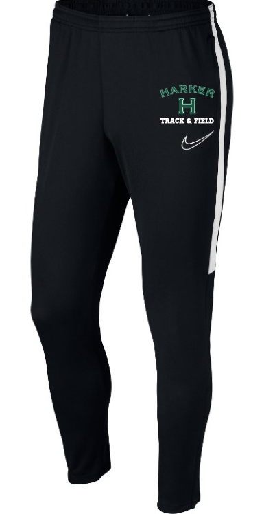 Nike Men Dri-FIT Academy pants