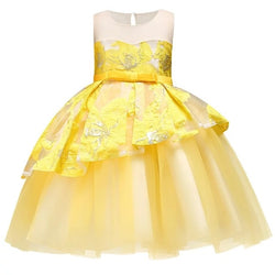 Girl's Party Dress with Tulle Skirt Ball Gown Design