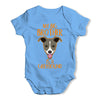 Personalised My Sibling Is A Greyhound Baby Unisex Baby Grow Bodysuit