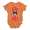 My Big Sister Is A French Bulldog Baby Unisex Baby Grow Bodysuit
