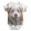 Golden Labrador Retriever Baby Unisex ALL-OVER PRINT Baby Grow Bodysuit