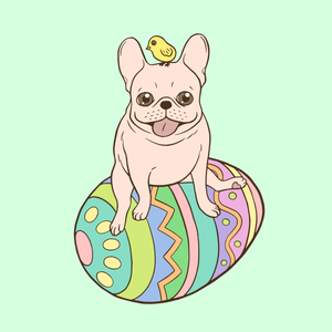Cream Frenchie and Easter chick on a coloful Easter egg