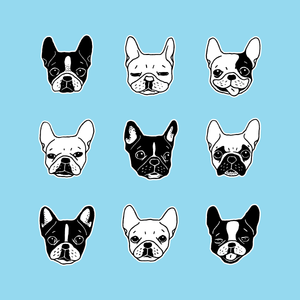 Cute Frenchies Doggie Family Collage
