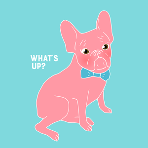 Pink Frenchie - What's Up?