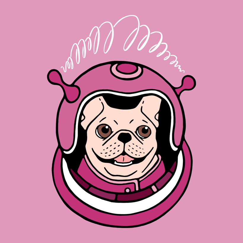 The adventure of a cute Frenchie spaceman