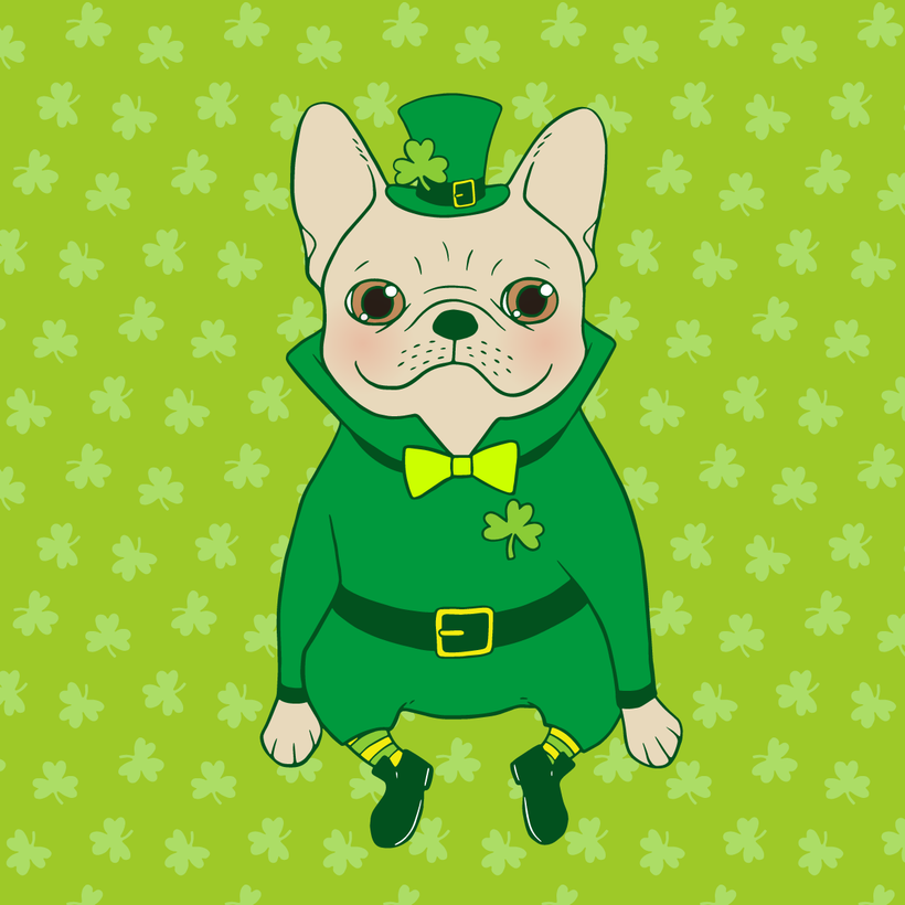 Cute French Bulldog is Feeling Lucky on St. Patrick's Day