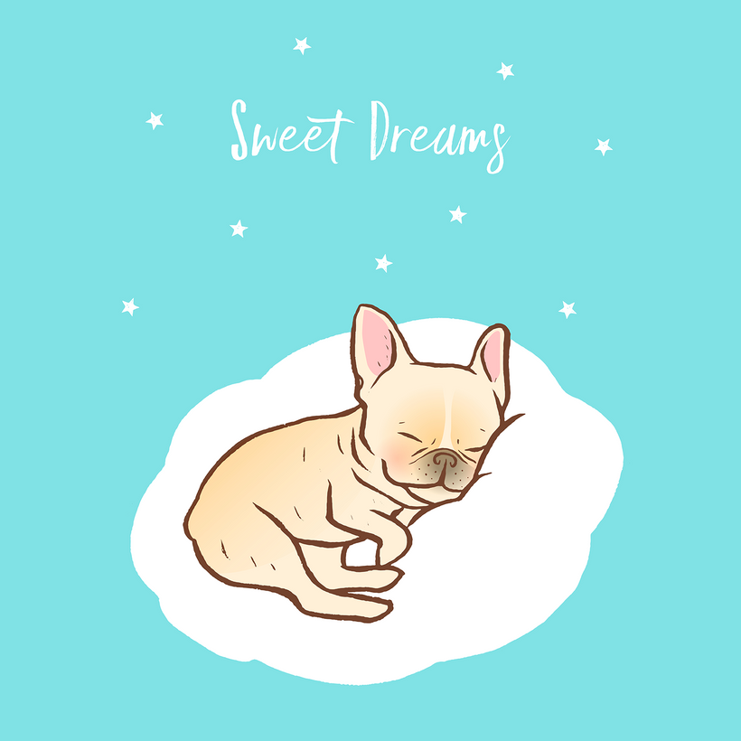 Frenchie Sweet Dreams on Cloud
