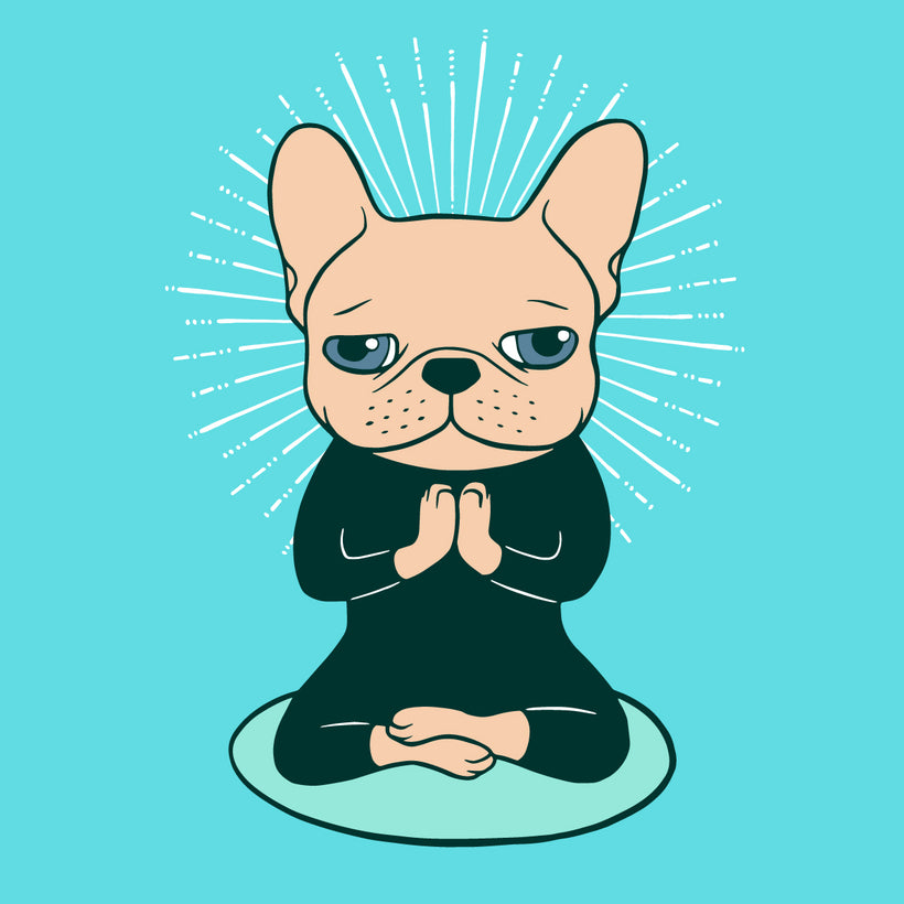 Meditate with the cute Frenchie to stay Zen