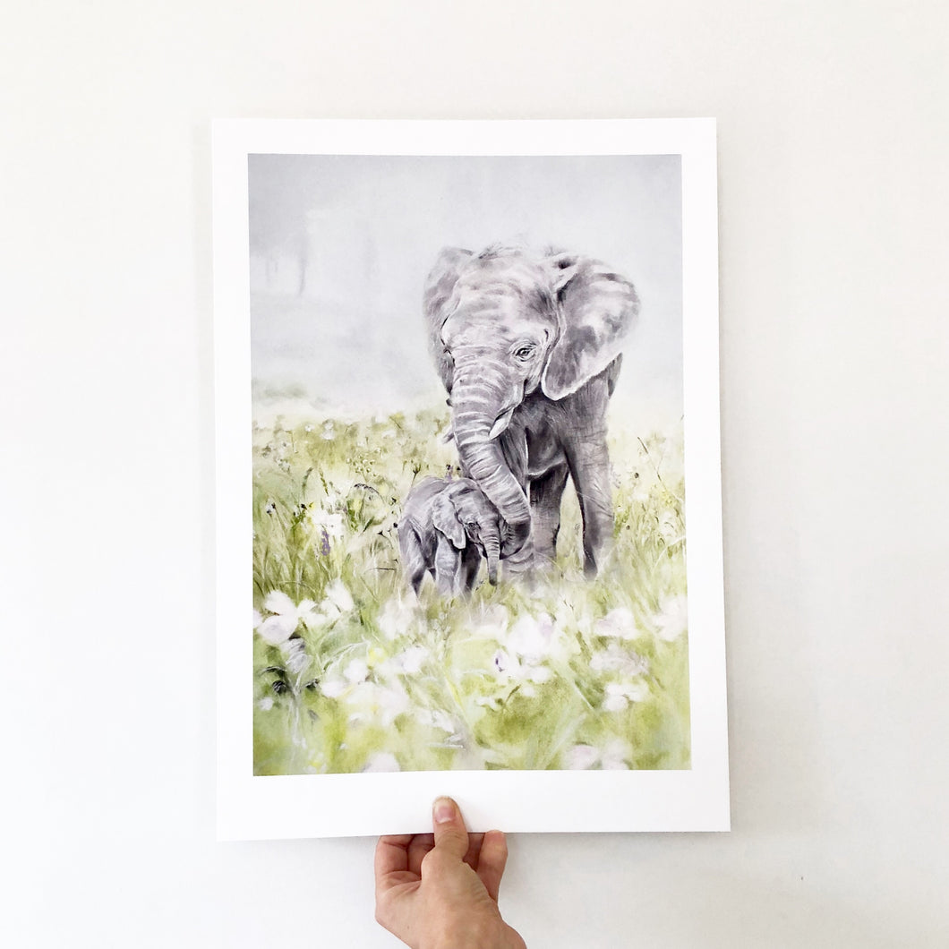 Elephants in the Meadows