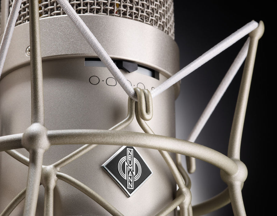 Neumann M 149 Tube Nine-Pattern Tube Mic with K 49 capsule, seven filter positions (M 149-SET-117)