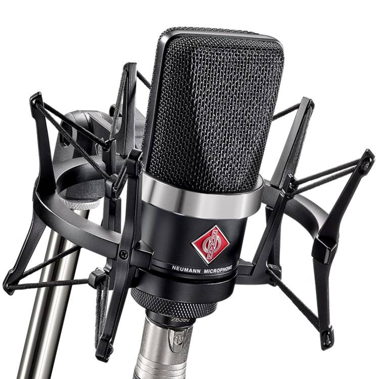 Neumann TLM 102 BK Studio Set Large Diaphragm Studio Condenser Microphone (black)