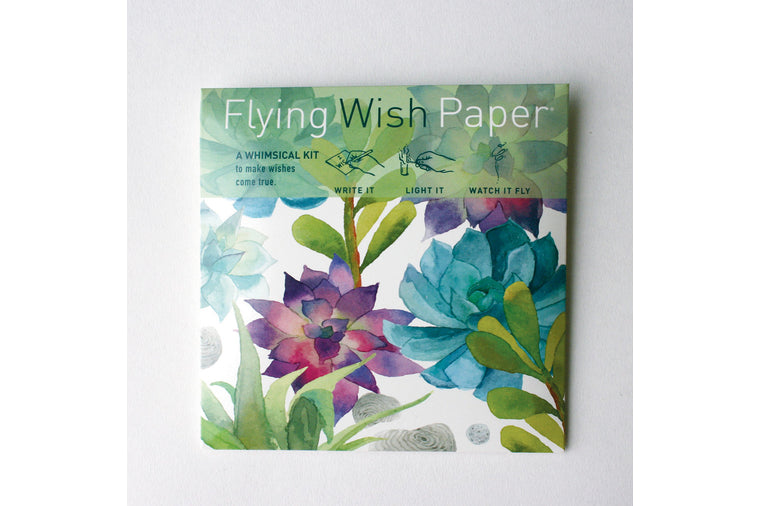 Cactus Garden Mini Flying Wish Kit