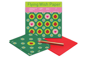 Ladybugs Mini Flying Wish Kit