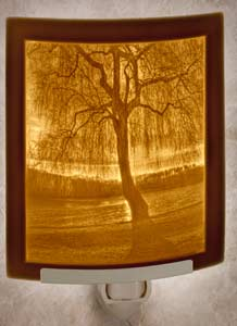 Willow Sunset Nightlight