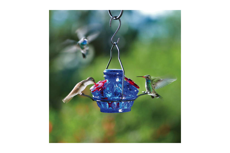 Pot de Creme Hummingbird Feeder