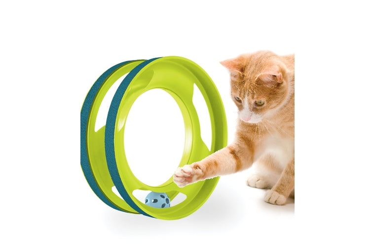 Ring Track Cat Toy