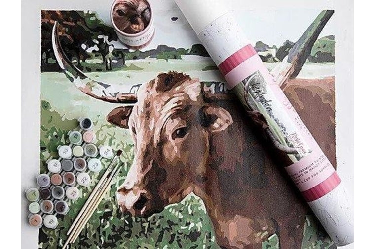Lucy Longhorn Paint by Number By Pink Picasso