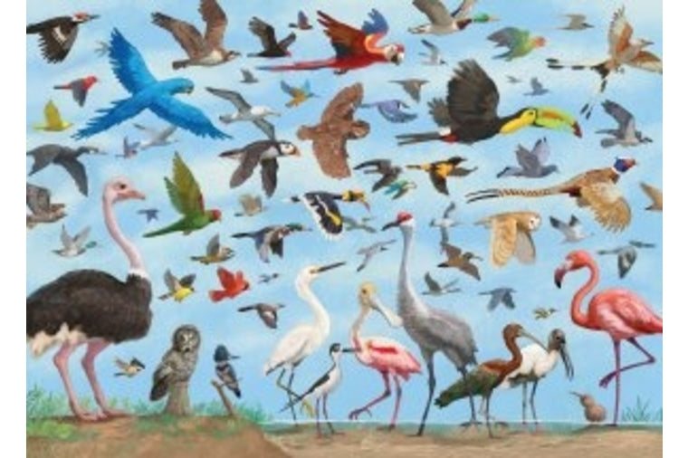 All The Birds Puzzle - Peter Pauper