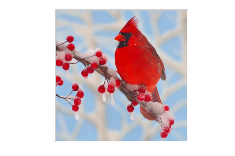 Winter Cardinal Small Zen Puzzle