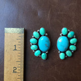 Beautiful Handmade Sterling Silver Blue and Green Campitos Earrings