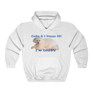 CUTE AND I KNOW IT,... Unisex Heavy Hoodie(multiple colors)