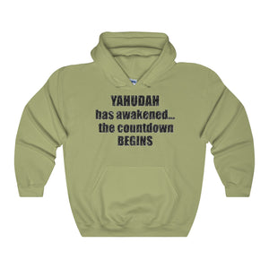 YAHUDAH HAS AWAKENED,...Unisex Heavy Hoodie(multiple colors)