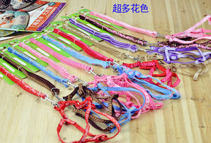 Pet Small Dog Puppy Cat Rabbit Color dog Collar + Leash, Adjustable Pet Safety Harness leash / Collar