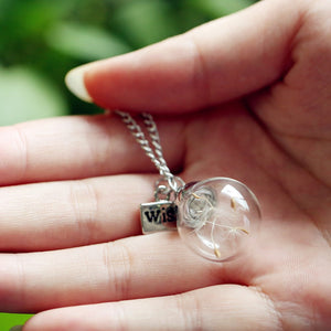 Make A Wish Glass, Bead Orb silver plated Glass bottle with Natural dandelion seed.
