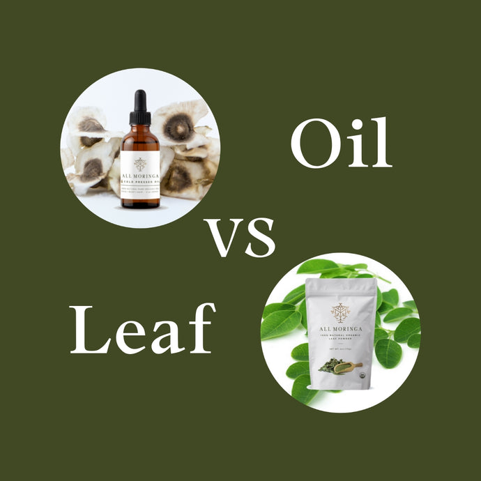 All You Need To Know About Moringa Leaves and Moringa Oil