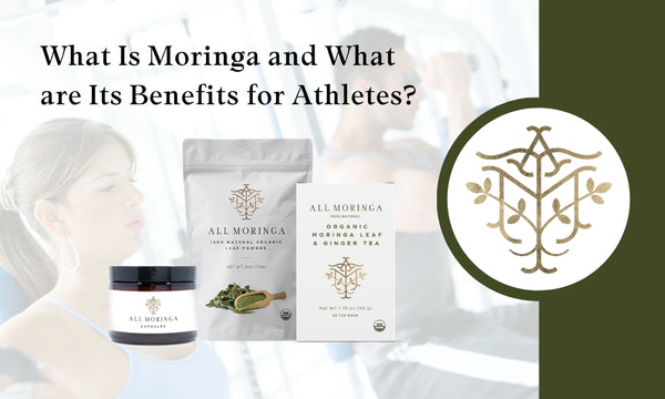 What Is Moringa and What are Its Benefits for Athletes?