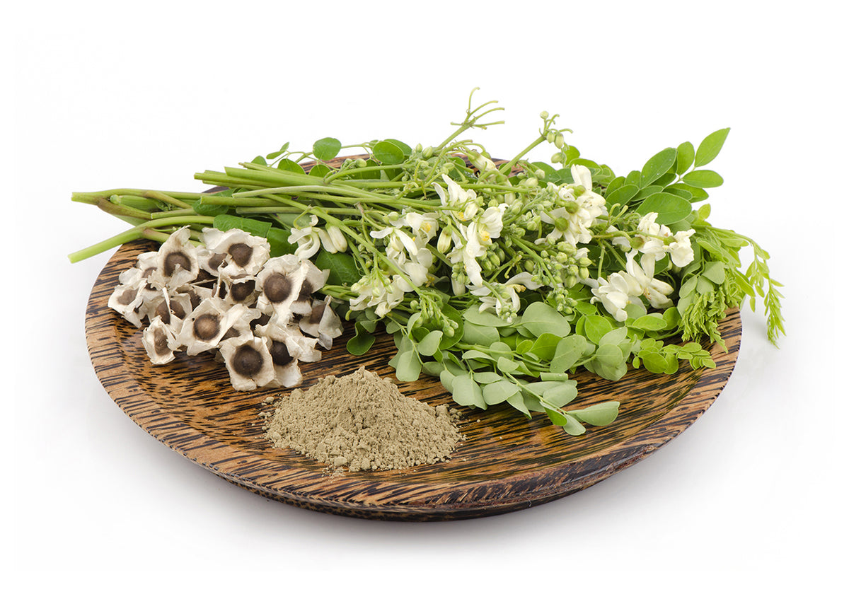 Moringa flowers oil and powder in a bowl