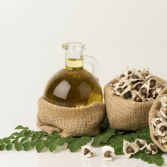 Moringa seed oil and leaves