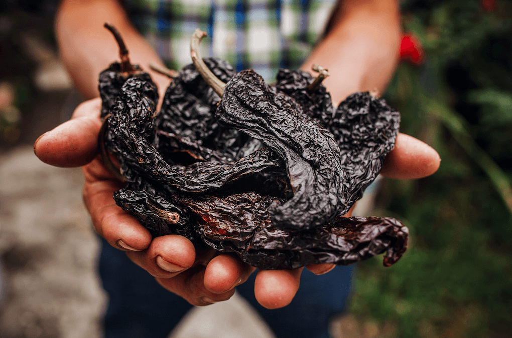 The Holy Trinity: The Best Dried Chiles For Cooking | Ole Rico