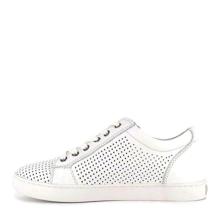 GELATO ZULU WHITE - Collective Shoes