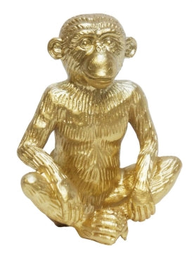 Sitting Gold Monkey
