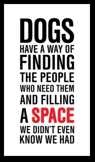 Dogs have a way...