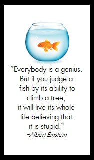 Everybody is a genius...