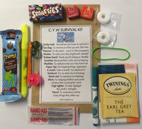 Child and Youth Worker Survival Kit