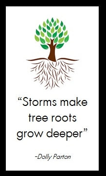 Storms make tree roots grow deeper