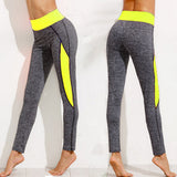Color Pop Gray Leggings