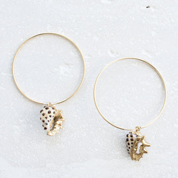 Tropical Shell Hoops