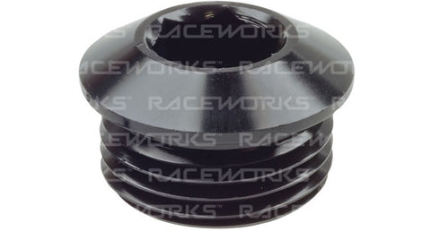 Raceworks AN in Hex O-Ring Plugs
