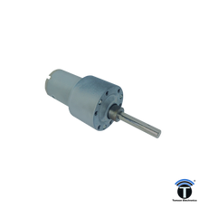 10 Rpm Johnson Geared Motor