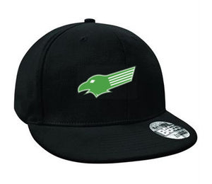 Kewford Eagles Snap Back Hat