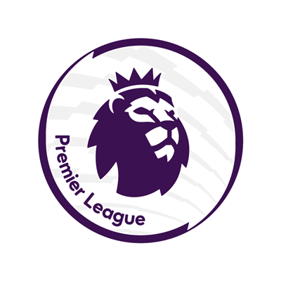 Official Premier League Sleeve Print