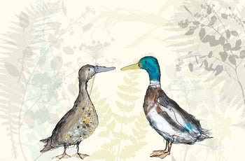 A collection of original works by award winning author and illustrator Catherine Rayner at The Biscuit Factory.