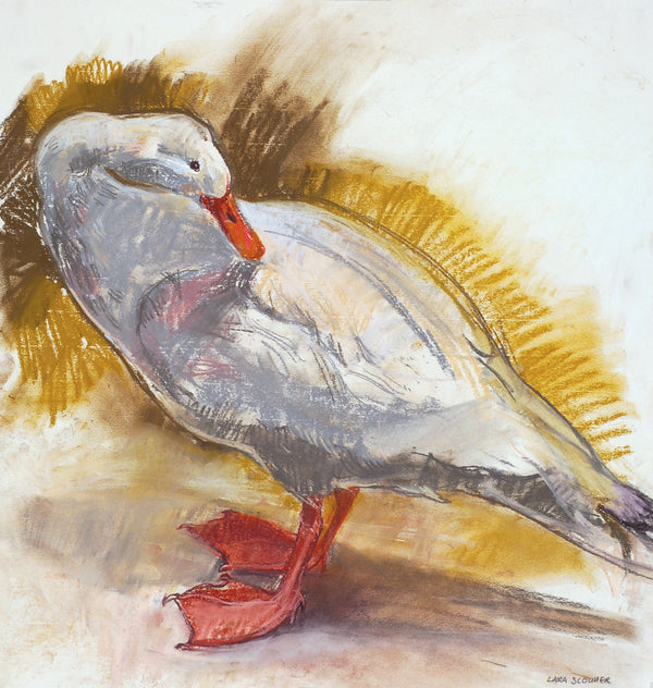 A collection of original paintings and drawings by award winning Scottish artist Lara Scouller at The Biscuit Factory.